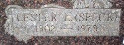 Lester L Terral