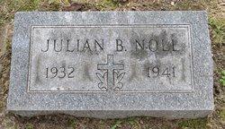 Julian B Noll