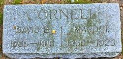 David B Cornell
