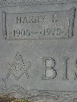 Harry Bisgard