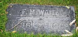 Frederick Madison Waite