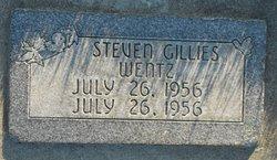 Steven Gillies Wentz