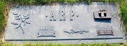 Albert Arp