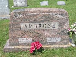 Grace Irene <I>Brown</I> Ambrose