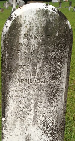 Mary E Lee