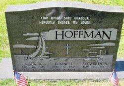 Lewis E. Hoffman