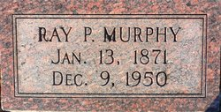 Ray P Murphy