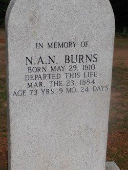 Nancy Ann Norris <I>Mathews</I> Burns