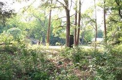Shockley/Pendergrass Cemetery