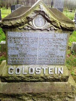 J Goldstein