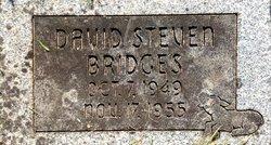 David Steven Bridges