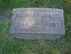Ellis B Whaley