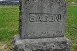 Lula B Bacon