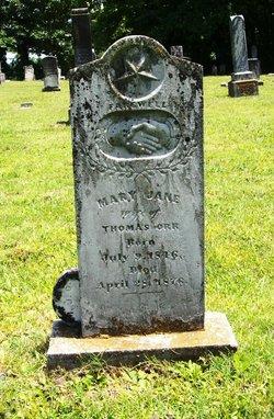 Mary Wyatt <I>Johnson</I> Orr