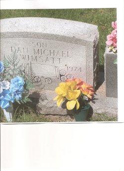 Dan Michael Wimsatt