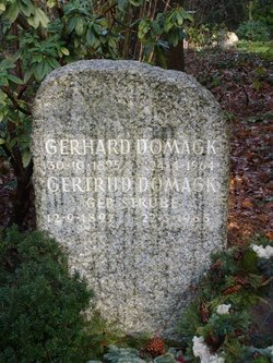 Gerhard Johannes Domagk