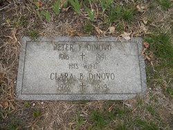 Clara Belle <I>Switzer</I> DiNovo