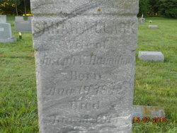 Sarah A. Hamilton