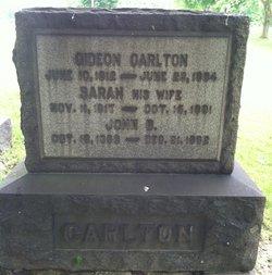 Sarah <I>Price</I> Carlton