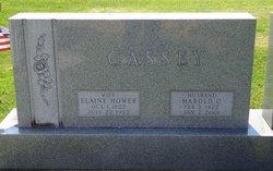 Elaine <I>Hower</I> Cassey