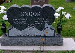 Joyce <I>Gilbraith</I> Snook
