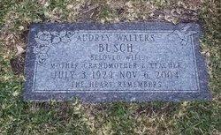 Audrey Ann <I>Walters</I> Busch