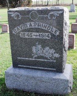 David A Prindle