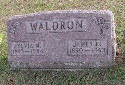 Sylvia M Waldron