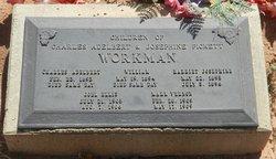 Harriet Josephine Workman