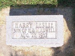 Harry L. Adwell