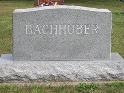 Dr Gregory J. Bachhuber