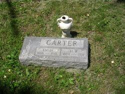 Roscoe H. Carter