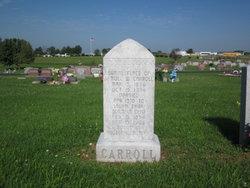 Laura A <I>Shirk</I> Carroll