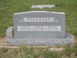 Lizzie B <I>Meadows</I> Anderson