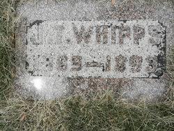 Esther Susan <I>Wilson</I> Whipps