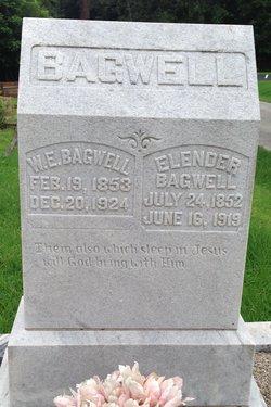 William Ervin Bagwell