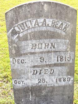 Julia Ann <I>Crew</I> Bean