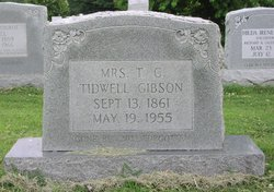 Talitha Catherine <I>Johnson</I> Gipson