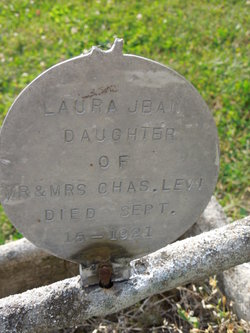 Laura Jean Levi