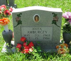 Anita Amburgey