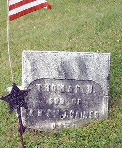 Thomas B Haines