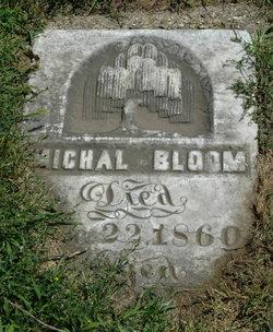 Michel Bloom