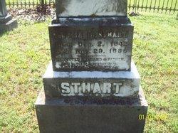 Pittman Cicero Stuart