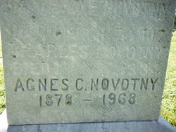 Agnes Novotny
