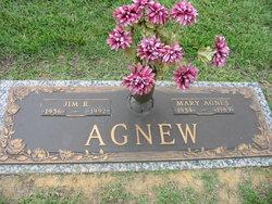 Mary Agnes <I>Mink</I> Agnew