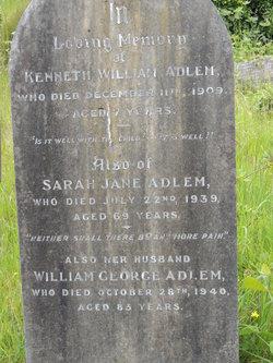 William George Adlem