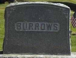 Hiram Burrows