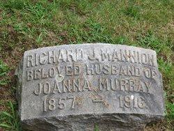 Richard J Mannion
