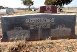 Robert Crittington Roberts