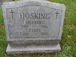 Herbert Hosking
